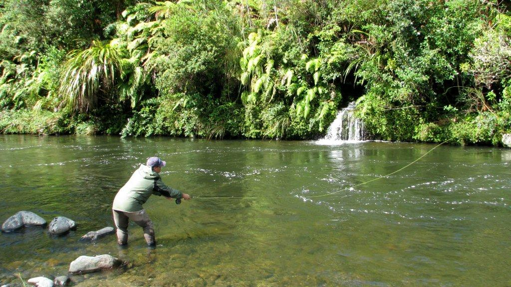 Summer Fly Fishing in NZ - Trout Fishing Guide - Fishing Guides New Zealand