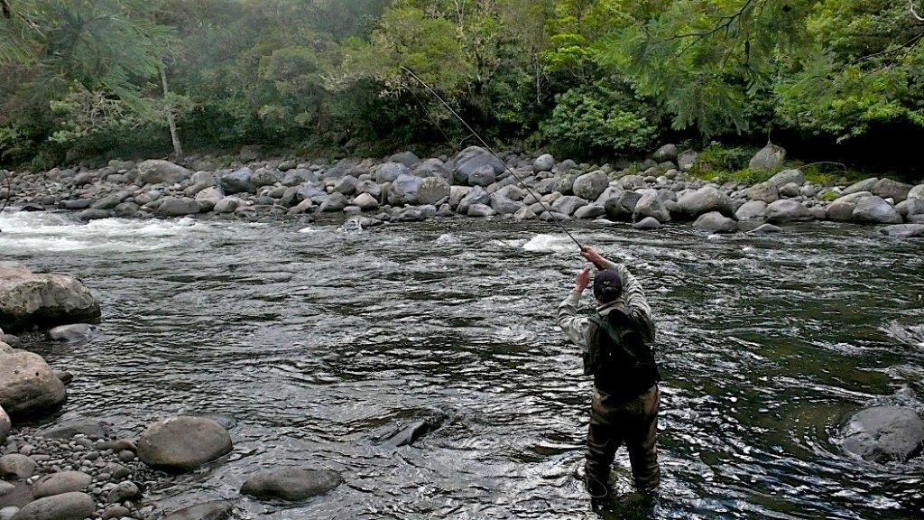Summer Fishing NZ - Fly Fishing Guide